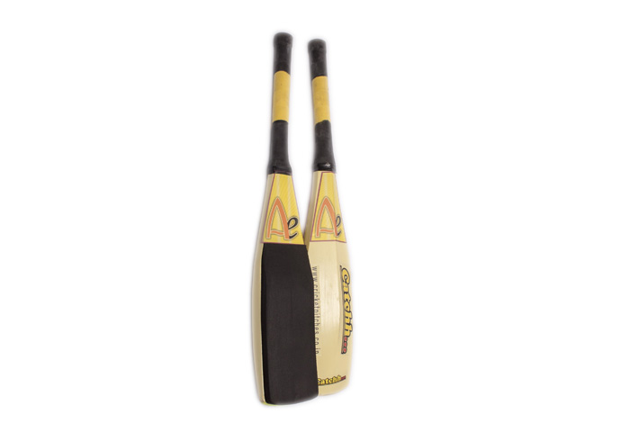 Ae Cricket Catchhh…. Bat