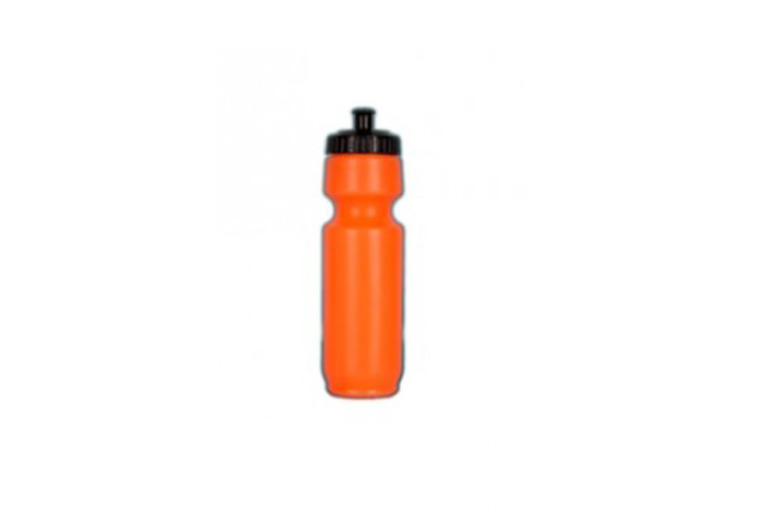 Ae Cricket Water Bottle